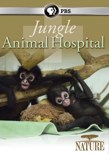 Jungle Animal Hospital